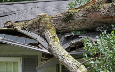 Roof insurance: What's covered and how to file a claim
